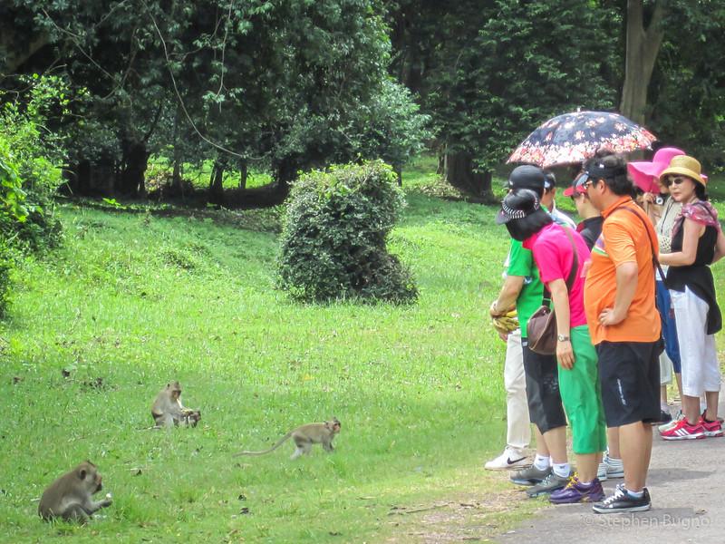 Angkor Day One-5143.jpg