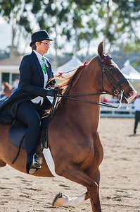 Mom Horse Show Selects