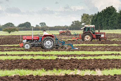 Cottenham Ploughing Match
