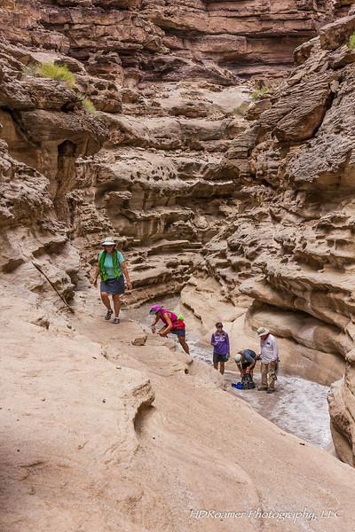 Grand-Canyon-2019-07-197.jpg
