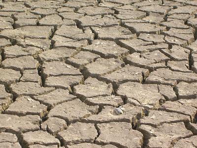 11-11 - The Drought - Mableton, GA