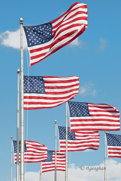 Nov 11_American Flags_0012.jpg