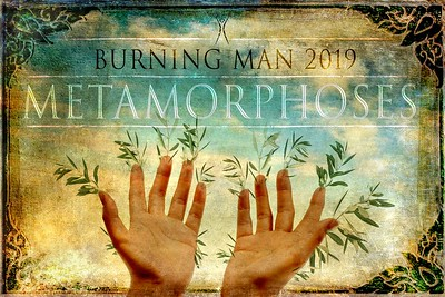 2019 - Metamorphoses