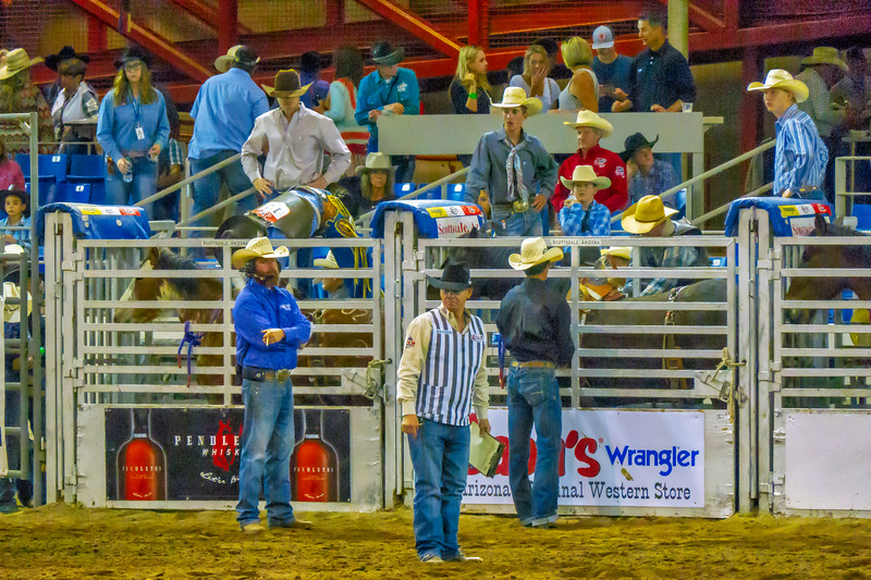Parada del Sol Rodeo Scottsdale March 11, 2018 12.jpg