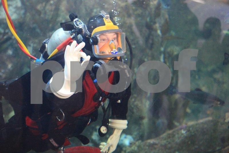 Seattle Aquarium 9104.jpg