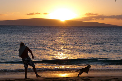 Fetch at Sunset December 2013, Cynthia Meyer, Maui, Hawaii