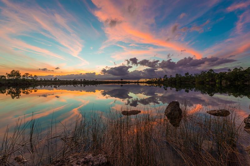 Everglades (48 of 60).jpg