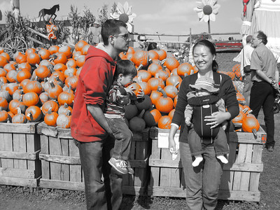 Linvilla Orchards Oct 2008