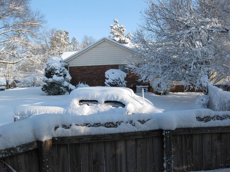Snow in Jackson_20090301_009.JPG