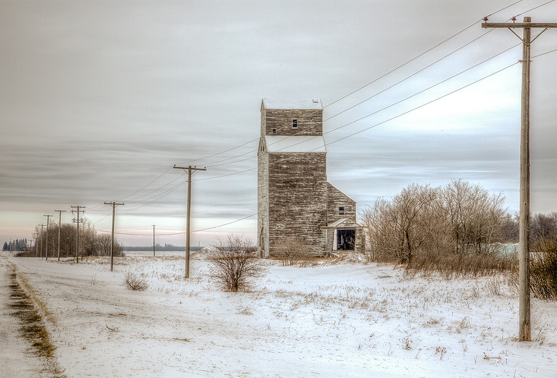 MCC4 Jean McManus Prairie Sentinel.jpg