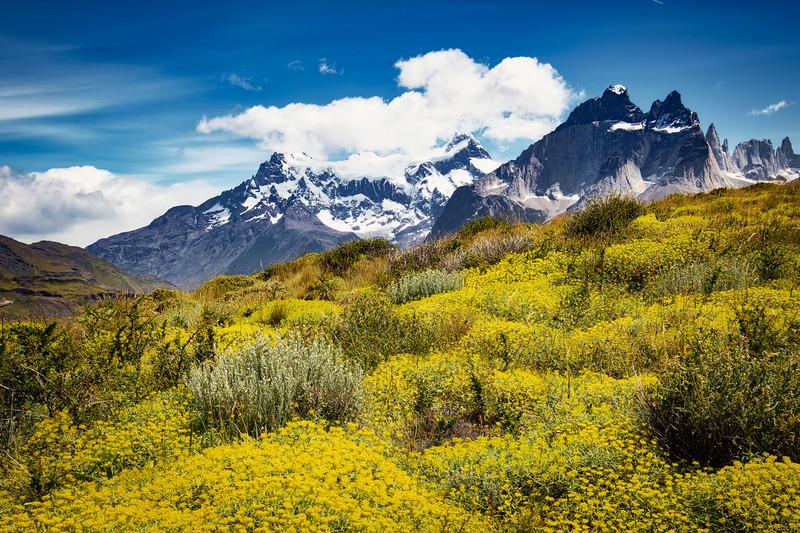 Chilie Patagonia GLACIER - 2019--10.JPG