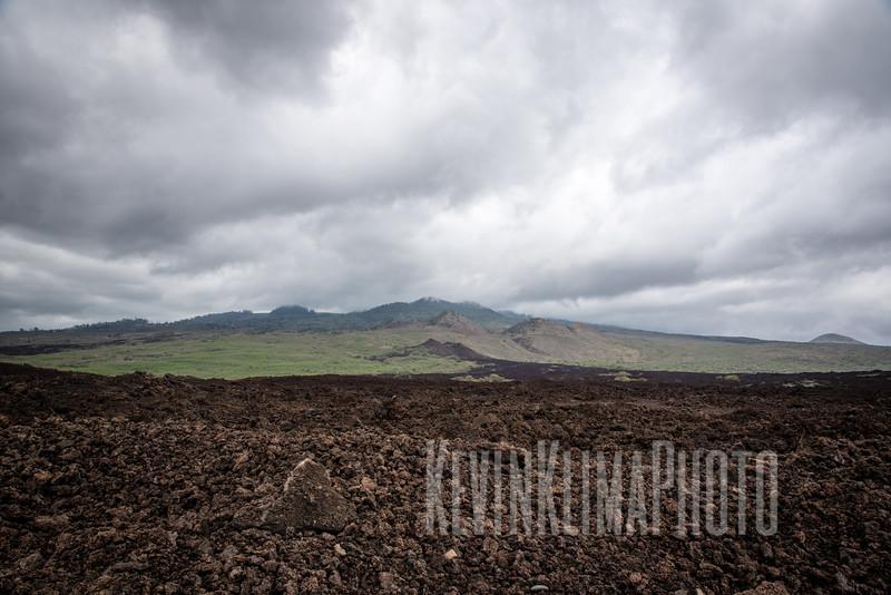 Maui2016-099.jpg