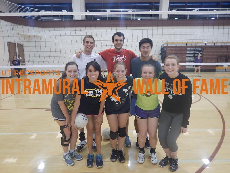 Spring 2016 Volleyball Coed B Runner Up Volley Llamas