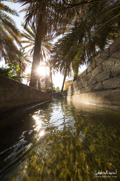 Oman (20).jpg