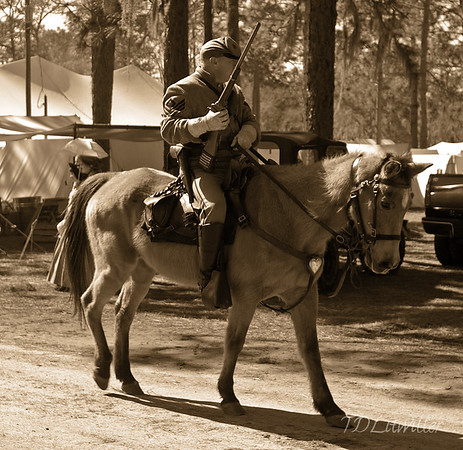 Battle of Olustee 2010