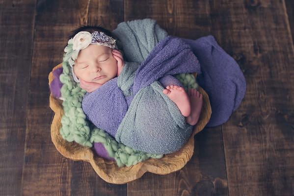 Braylee Newborn session