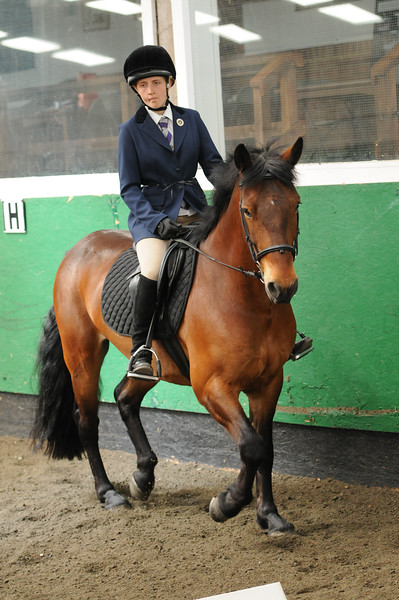 TRRC Dressage (08-May-16) - Class 4 (Prelim 4 (2002)