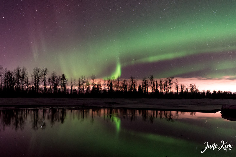 2019.02.01_Northern Lights-6106095-Juno Kim.jpg