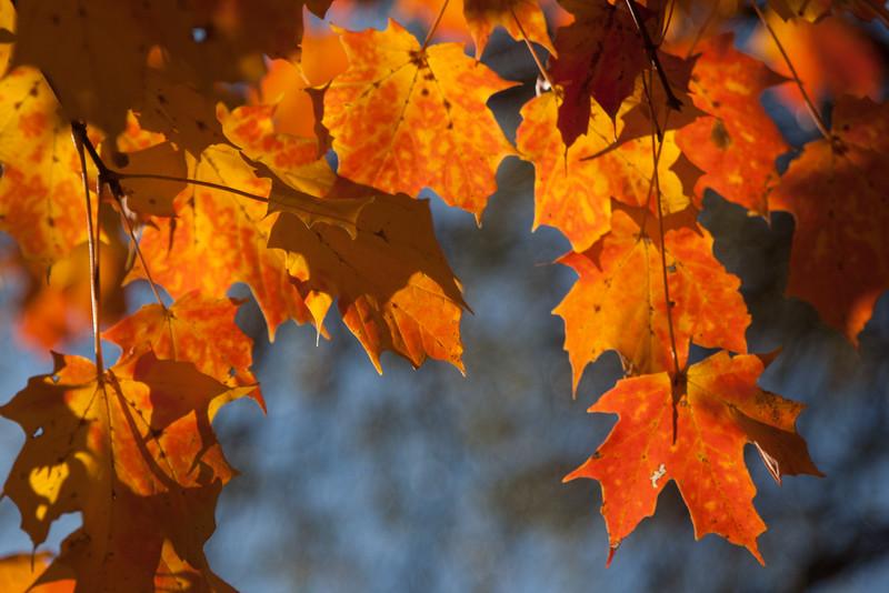 20121021-2012-10-2116-27-1213213.jpg