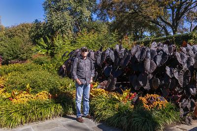 2014.11 Dallas Arboretum, Macro Lens