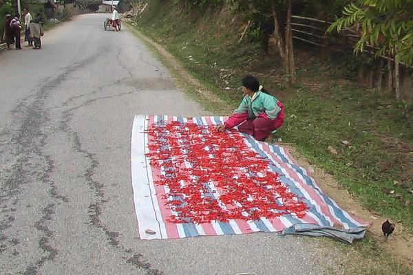 From Luang Nam Tha to Nang Khaiw (December 8, 2004)