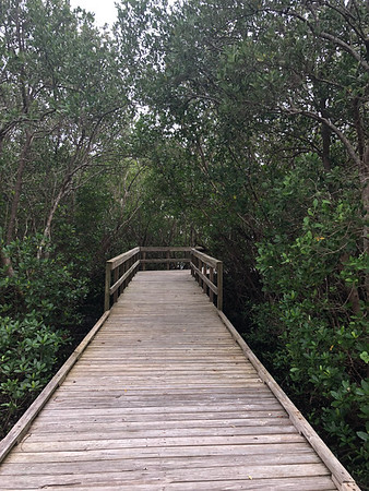 Upper Tampa Bay Park - 5 of 8 for 2018 Hillsborough Hiking Spree