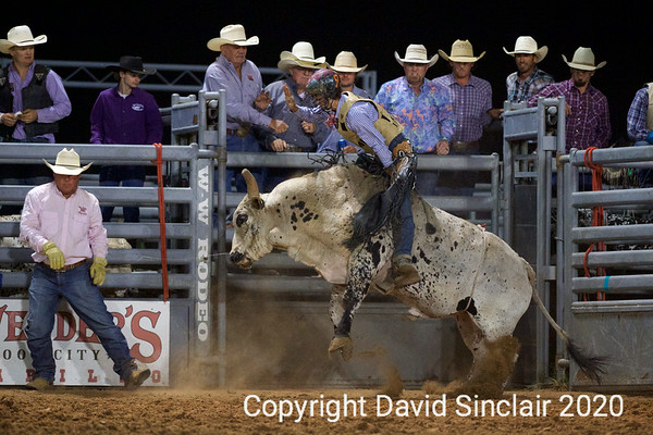 Range Riders Bulls