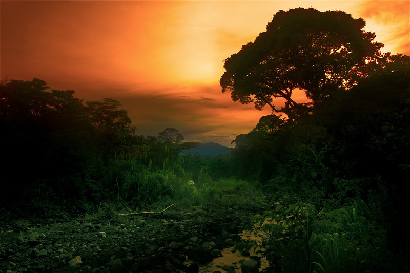 7313_Costa_Rica_v3.jpg