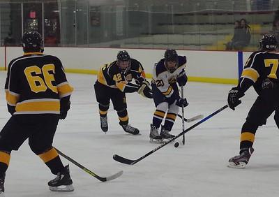 2013-14 FHS Hockey