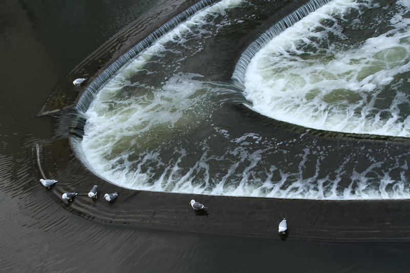BathWater2.jpg