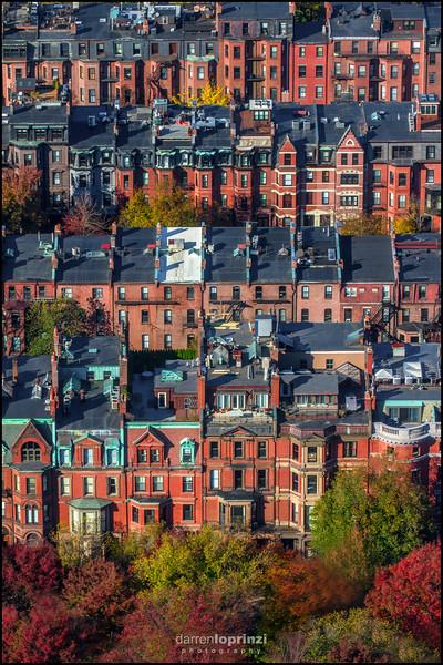 Boston Aerial Vertical Foliage WM 1969-.jpg