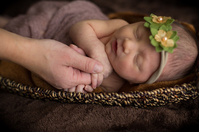 Eleanor Collins Featuring Rylee Kubic- Newborn Baby Portrait Studio Photography- Natural Candid- Western Massachusetts New England Photographer- Westfield, Southwick, Amherst, Southampton, Easthampton, Agawam, Springfield, Longmadow Photography- Courtney