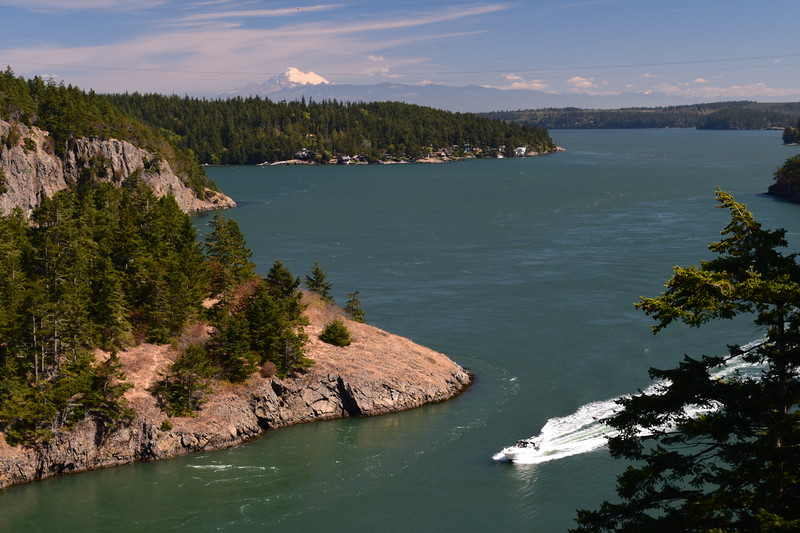 Ferry & Whidbey (106).JPG