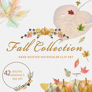 Fall Collection $10