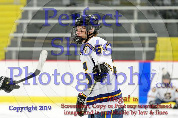 Ice Hockey ----- ( 2018 - 2019 )