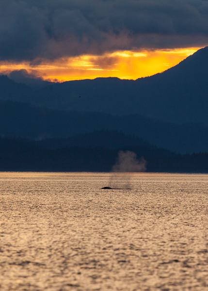 Alaska-150.jpg