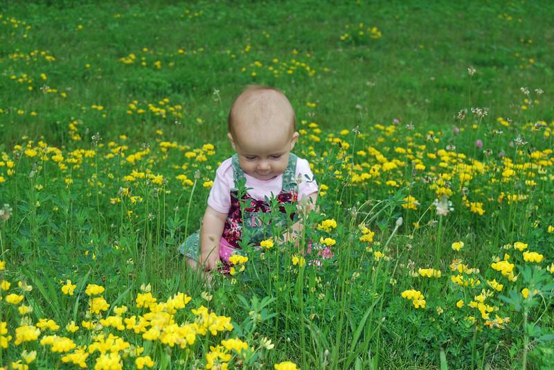 3575 Blooming in the flowers.jpg