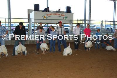 2014 LP Livestock Show