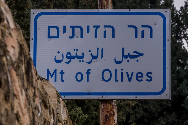 Jerusalém - Monte das Oliveiras