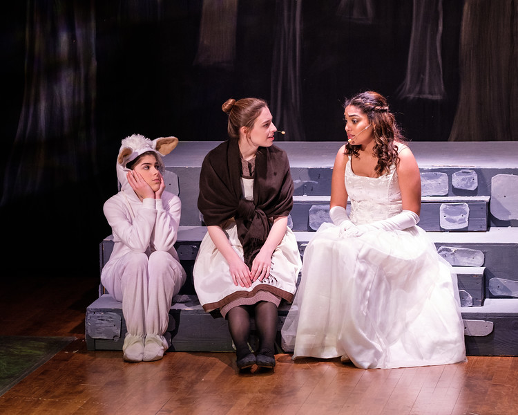 2018-03 Into the Woods Performance 1188.jpg