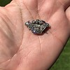 1.52ctw Victorian Diamond Crown Motif Clasp 9
