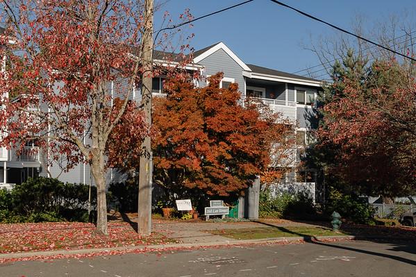 160 Lee St Unit 103 Seattle 98109