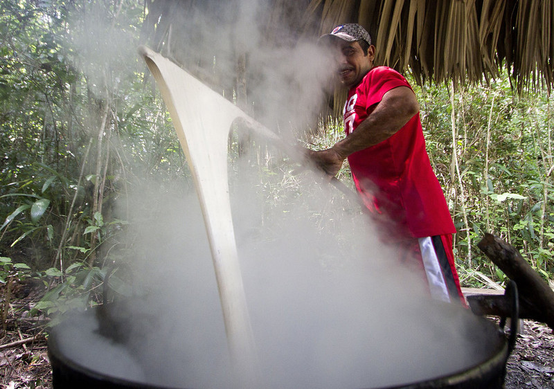 """. The \'chiclero\' Alfredo Rodriguez cooks the latex of the chicozapote tree to make the base of gum used for organic chewing gum, in the jungle of Tres Garantias in Quintana Roo State, Mexico, on November 16, 2012. Small chewing gum producers are using old Mayan ways in the Yucatan rainforest to harvest the original \""""chicle\"""", which is making a comeback thanks to growing demand for organic gum in Europe and Asia.  Pedro PARDO/AFP/Getty Images"""