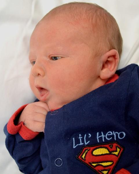 little hero 2 color.jpg