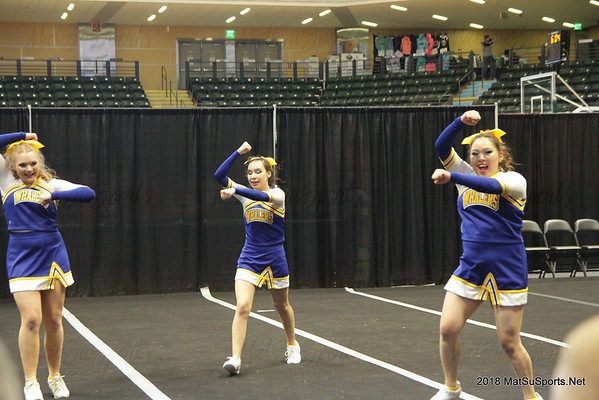 2018-3-21 State Cheer