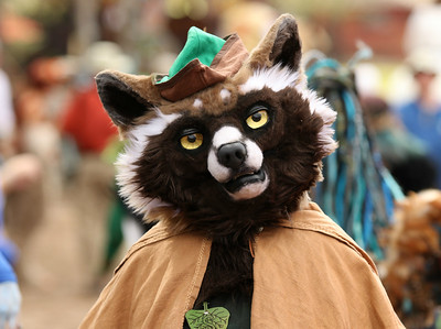 2019 Sherwood Forest Faire