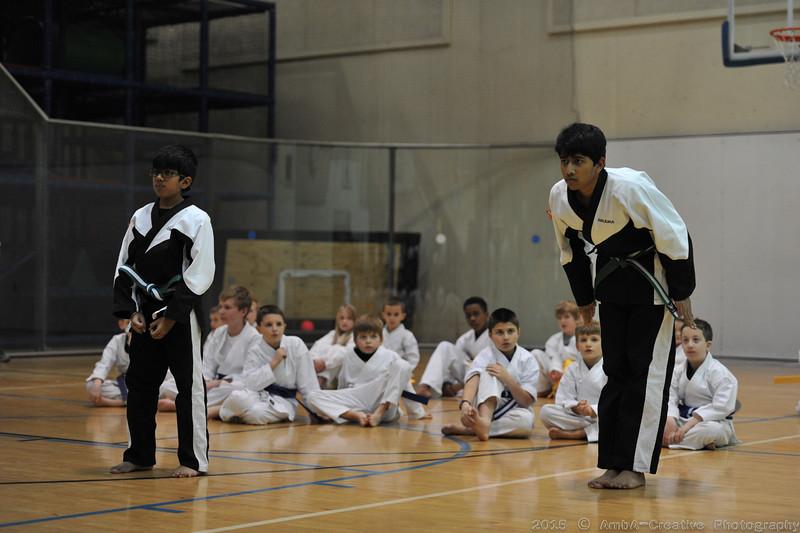 2015-12-18_HAC_KarateBeltPromotion@HockessinDE_19.jpg
