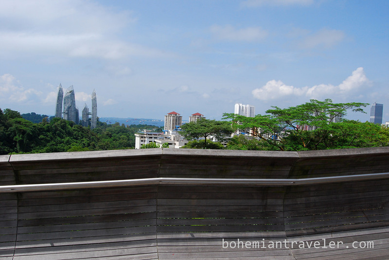 view from the Henderson Waves Bridge Singapore.jpg
