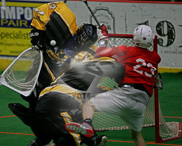 Syracuse Stingers Lacrosse (Independent, Semi-Pro)