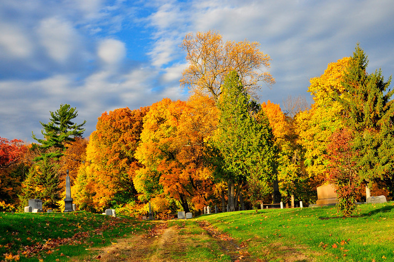 Autumn Colors at Albany Rural Cemetery